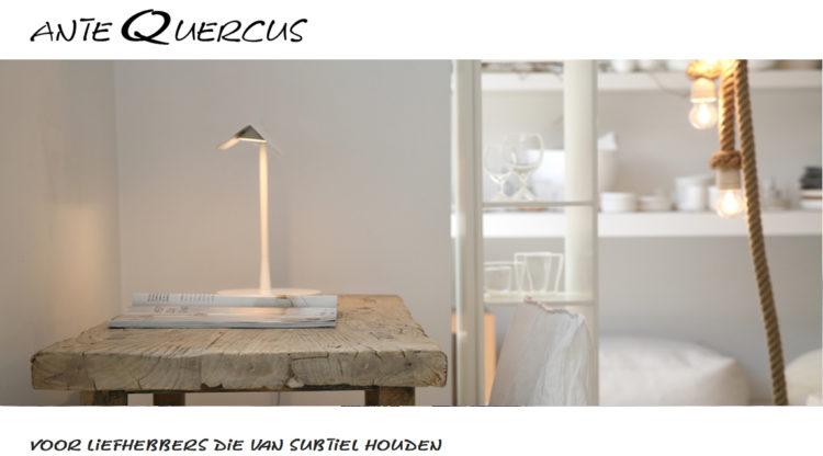 antequercus referentie voor IMO Online Concepts